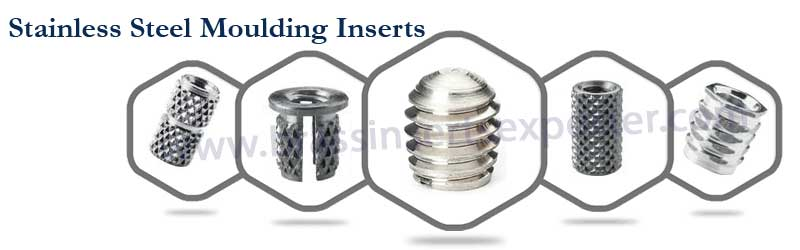 Stainless Steel Moulding Inserts
